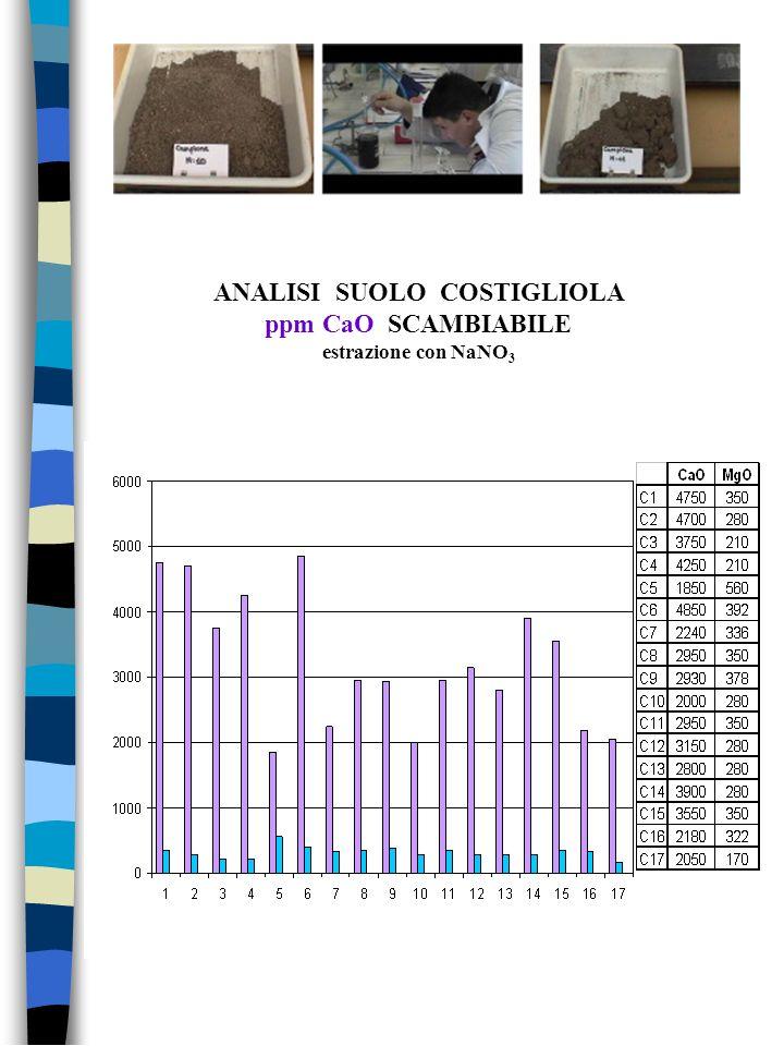 ANALISI SUOLO COSTIGLIOLA ppm CaO SCAMBIABILE estrazione con NaNO 3