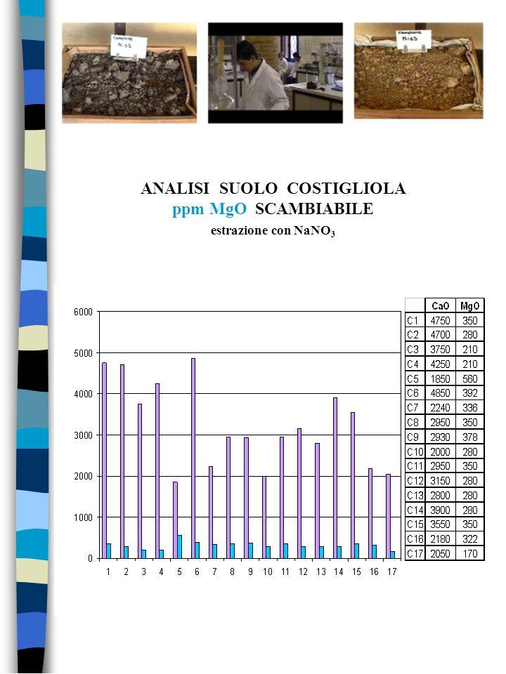 ANALISI SUOLO COSTIGLIOLA ppm MgO SCAMBIABILE estrazione con NaNO 3