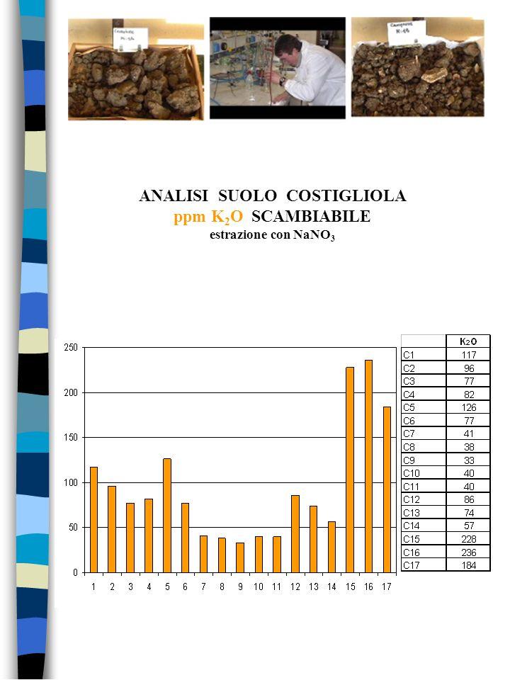 ANALISI SUOLO COSTIGLIOLA ppm K 2 O SCAMBIABILE estrazione con NaNO 3