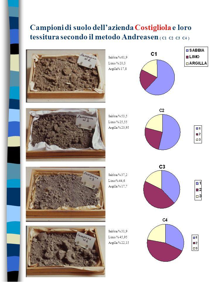 Campioni di suolo dellazienda Costigliola e loro tessitura secondo il metodo Andreasen ( C1 C2 C3 C4 ) Sabbia % 61,9 Limo % 20,3 Argilla% 17,8 Sabbia