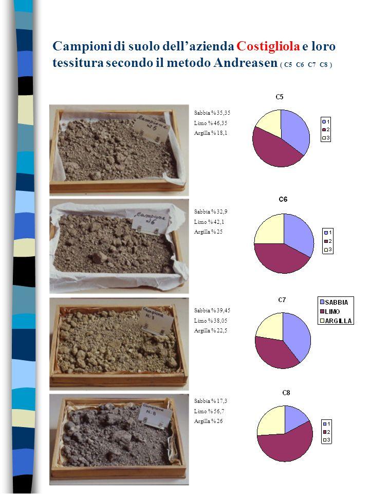 Campioni di suolo dellazienda Costigliola e loro tessitura secondo il metodo Andreasen ( C5 C6 C7 C8 ) Sabbia % 35,35 Limo % 46,35 Argilla % 18,1 Sabb