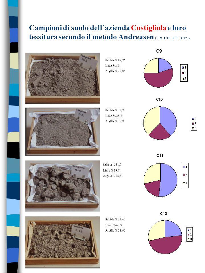 Campioni di suolo dellazienda Costigliola e loro tessitura secondo il metodo Andreasen ( C9 C10 C11 C12 ) Sabbia % 19,95 Limo % 55 Argilla % 25,05 Sab
