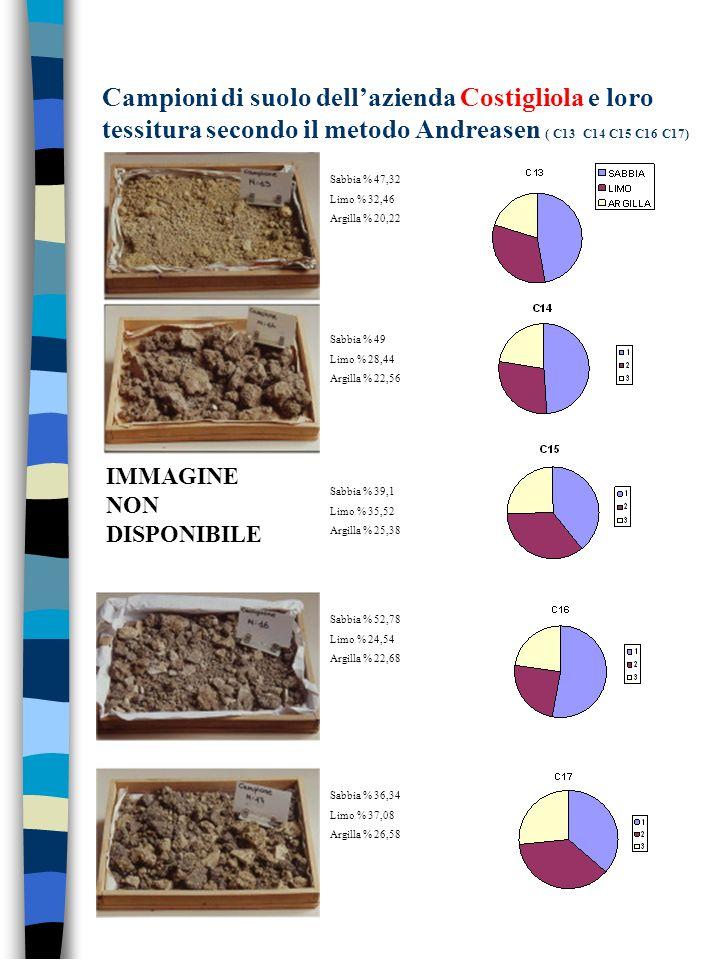 Campioni di suolo dellazienda Costigliola e loro tessitura secondo il metodo Andreasen ( C13 C14 C15 C16 C17) IMMAGINE NON DISPONIBILE Sabbia % 47,32