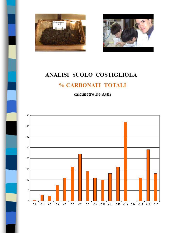 ANALISI SUOLO COSTIGLIOLA % CARBONATI TOTALI calcimetro De Astis
