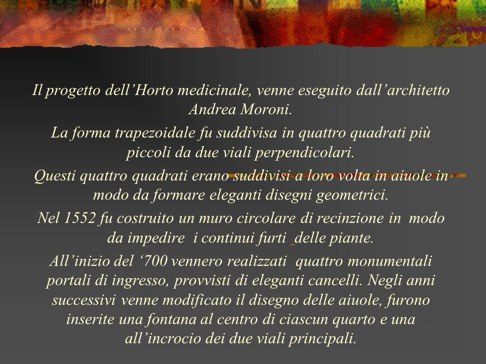 Il progetto dellHorto medicinale, venne eseguito dallarchitetto Andrea Moroni. La forma trapezoidale fu suddivisa in quattro quadrati più piccoli da d
