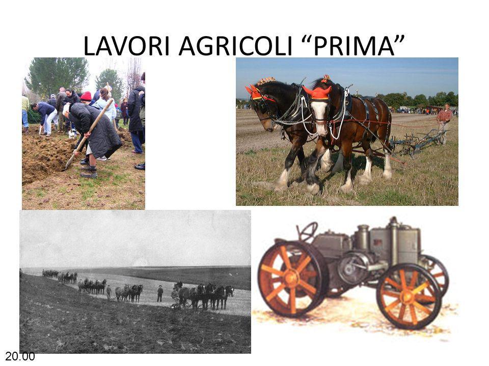 LAVORI AGRICOLI PRIMA 20.02