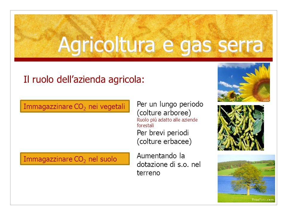 Agricoltura e gas serra Il ruolo dellazienda agricola: Mettere a disposizione i terreni per il fotovoltaico Utilizzare scarti e deiezioni per produrre energia