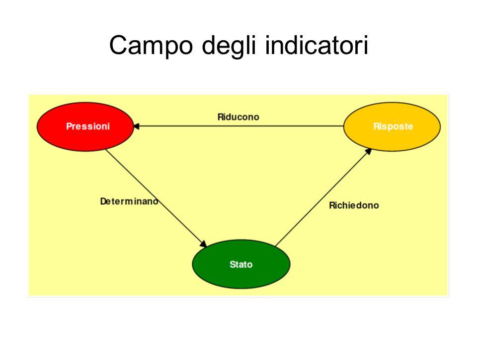 Campo degli indicatori