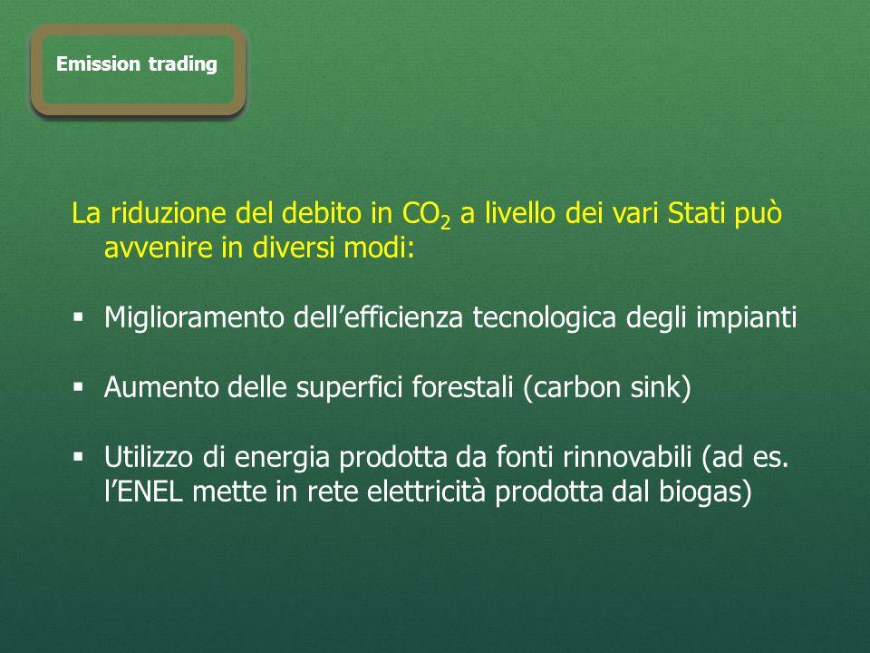 La riduzione del debito in CO 2 a livello dei vari Stati può avvenire in diversi modi: Miglioramento dellefficienza tecnologica degli impianti Aumento delle superfici forestali (carbon sink) Utilizzo di energia prodotta da fonti rinnovabili (ad es.