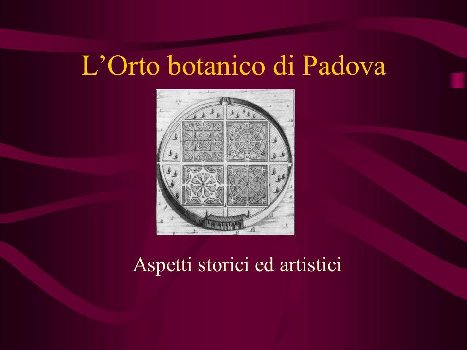 LOrto botanico di Padova Aspetti storici ed artistici