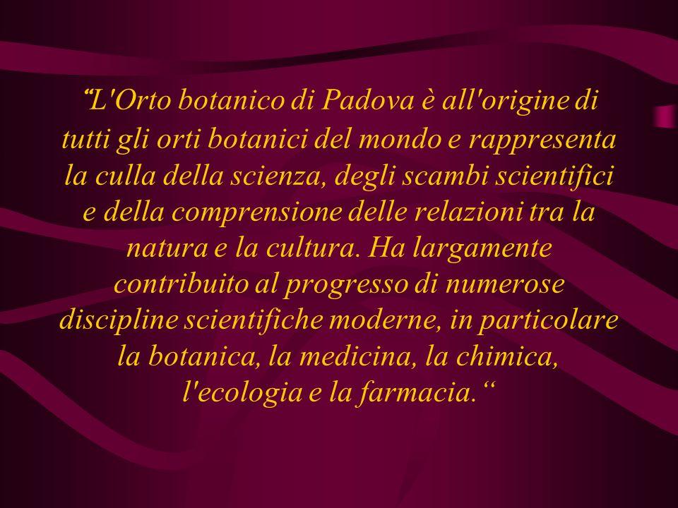 L Orto botanico di Padova è all origine di tutti gli orti botanici del mondo e rappresenta la culla della scienza, degli scambi scientifici e della comprensione delle relazioni tra la natura e la cultura.