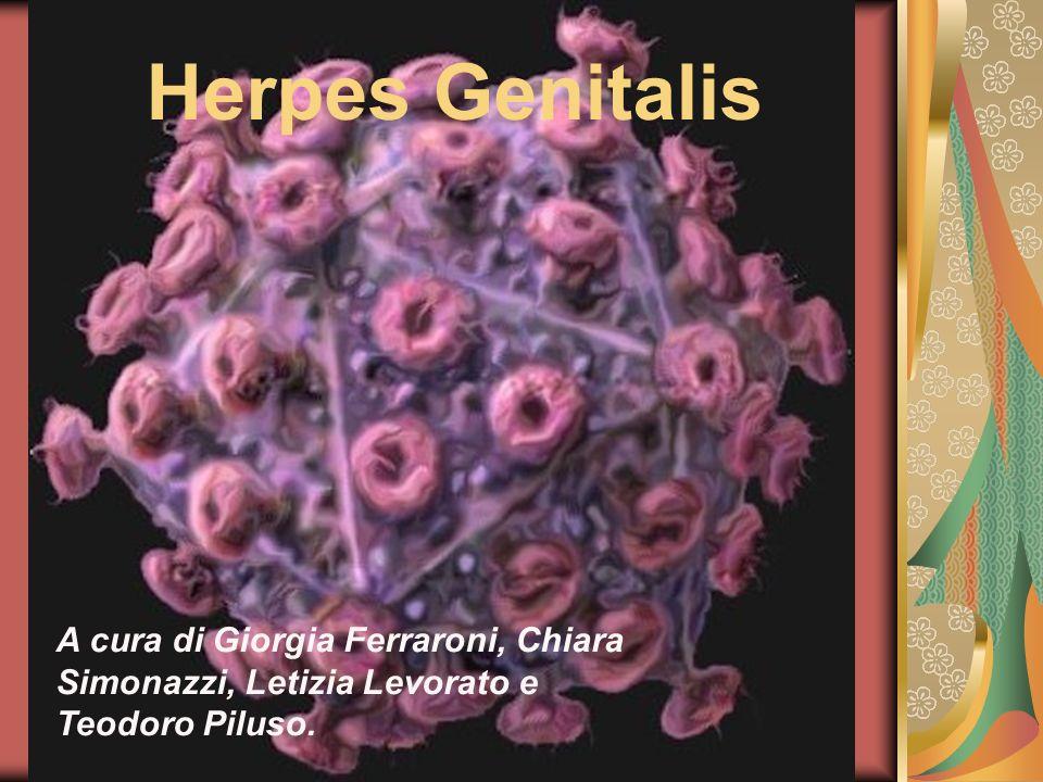 A cura di Giorgia Ferraroni, Chiara Simonazzi, Letizia Levorato e Teodoro Piluso. Herpes Genitalis