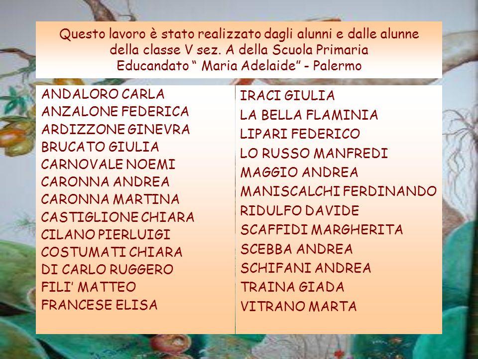 Questo lavoro è stato realizzato dagli alunni e dalle alunne della classe V sez. A della Scuola Primaria Educandato Maria Adelaide - Palermo ANDALORO