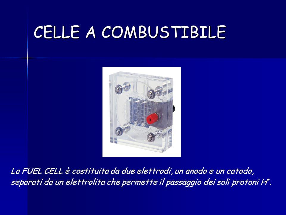 CELLE A COMBUSTIBILE La FUEL CELL è costituita da due elettrodi, un anodo e un catodo, separati da un elettrolita che permette il passaggio dei soli p
