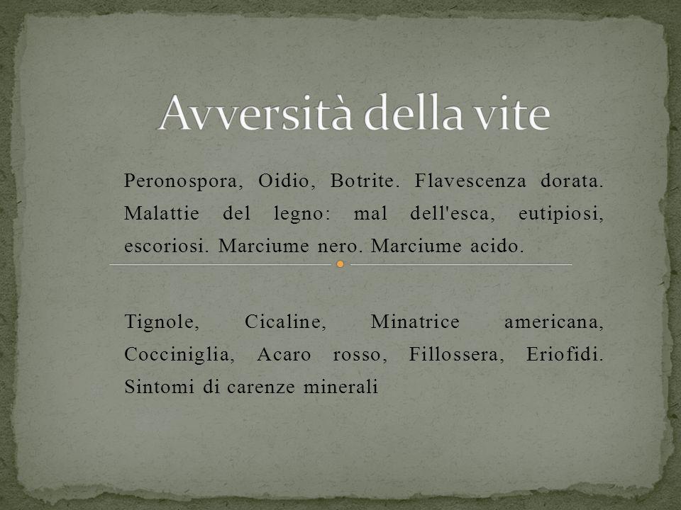 Peronospora, Oidio, Botrite. Flavescenza dorata. Malattie del legno: mal dell'esca, eutipiosi, escoriosi. Marciume nero. Marciume acido. Tignole, Cica