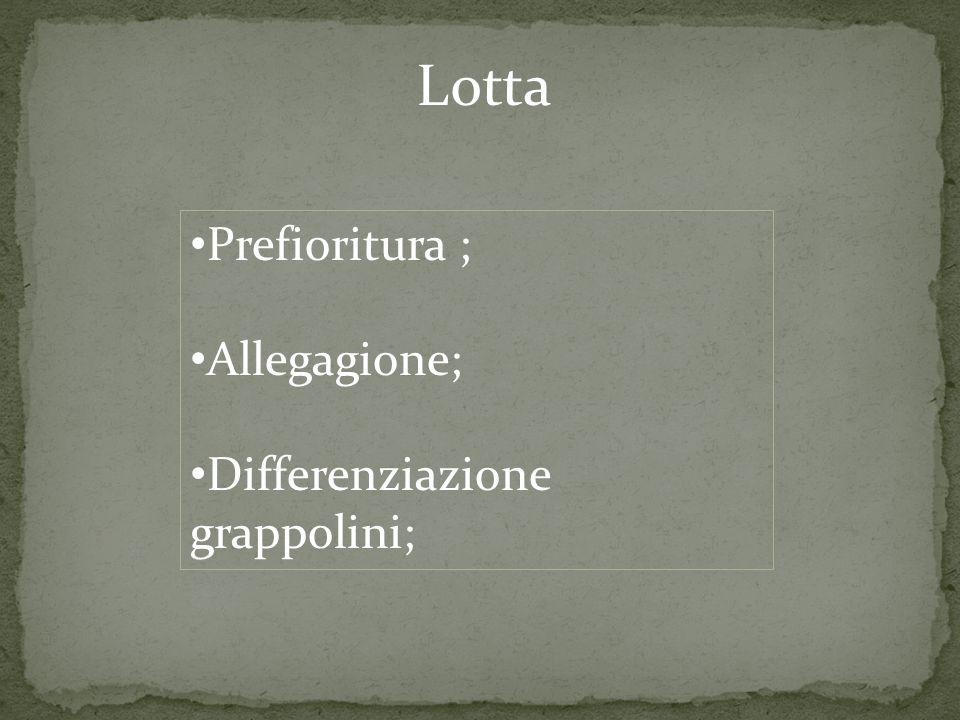 Lotta Prefioritura ; Allegagione; Differenziazione grappolini;