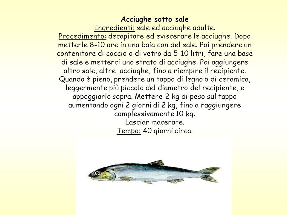 Acciughe sotto sale Ingredienti: sale ed acciughe adulte. Procedimento: decapitare ed eviscerare le acciughe. Dopo metterle 8-10 ore in una baia con d