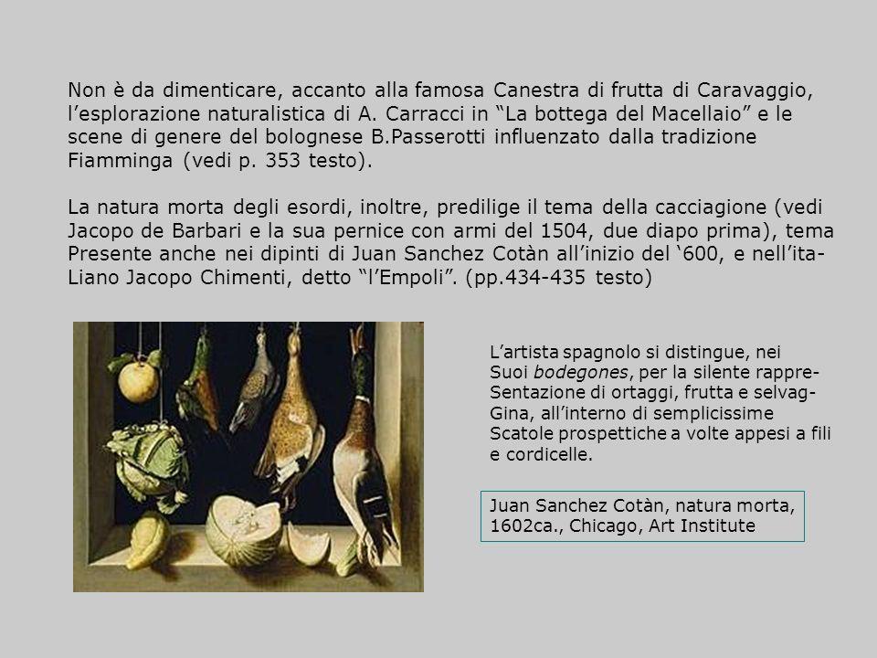 Non è da dimenticare, accanto alla famosa Canestra di frutta di Caravaggio, lesplorazione naturalistica di A. Carracci in La bottega del Macellaio e l