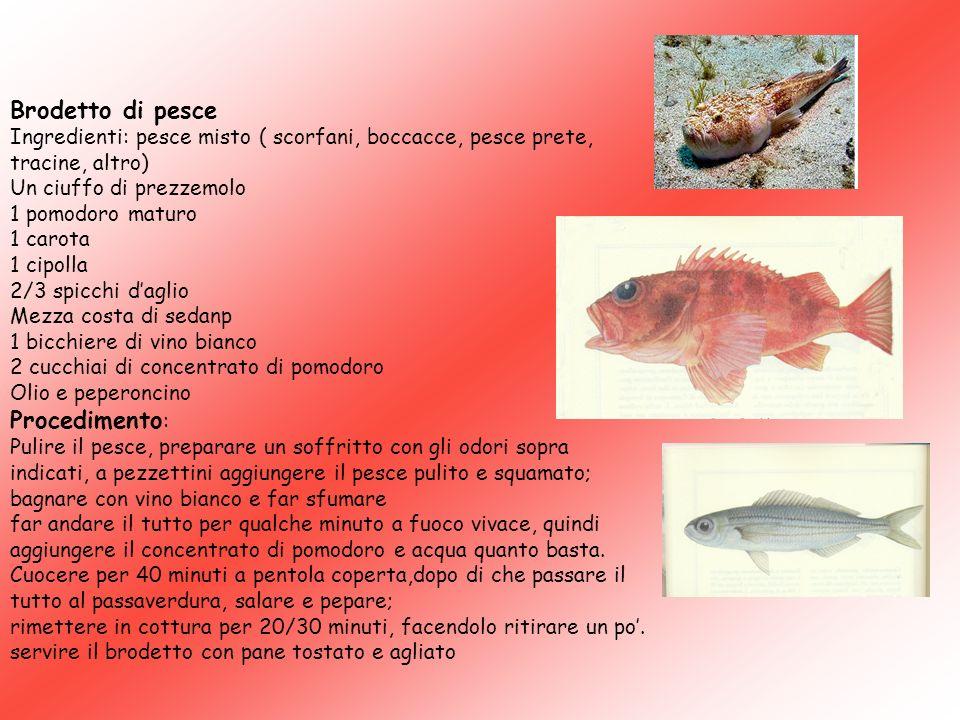 Brodetto di pesce Ingredienti: pesce misto ( scorfani, boccacce, pesce prete, tracine, altro) Un ciuffo di prezzemolo 1 pomodoro maturo 1 carota 1 cip