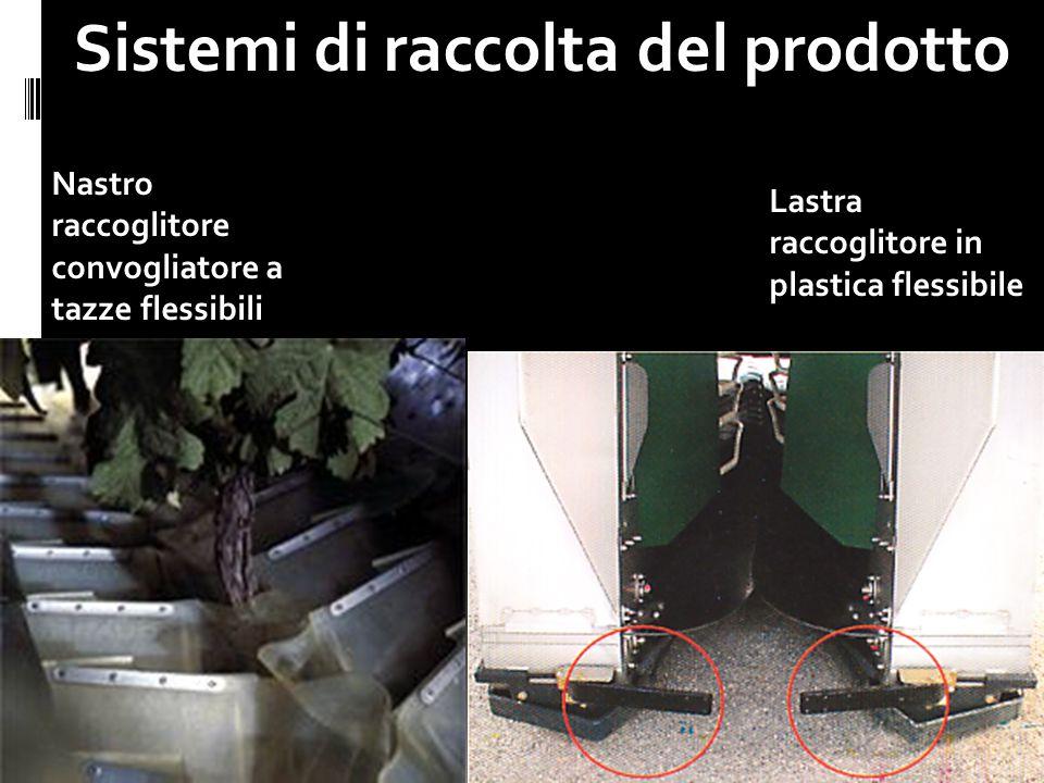 24 Sistemi di raccolta del prodotto 20.29 Nastro raccoglitore convogliatore a tazze flessibili Lastra raccoglitore in plastica flessibile