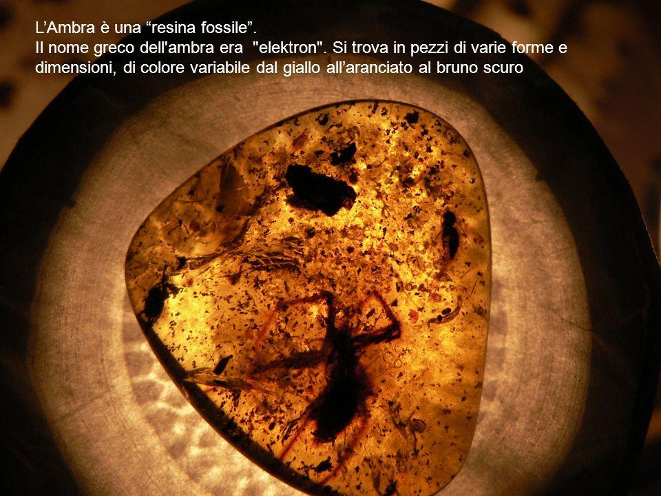 LAmbra è una resina fossile. Il nome greco dell'ambra era