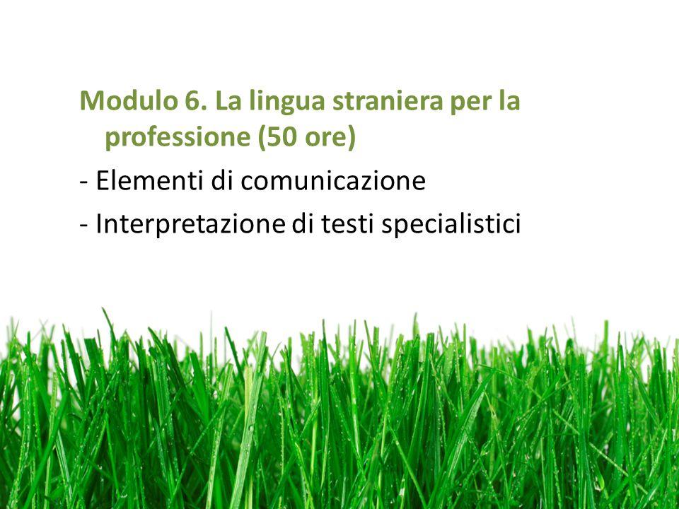 Modulo 6. La lingua straniera per la professione (50 ore) - Elementi di comunicazione - Interpretazione di testi specialistici