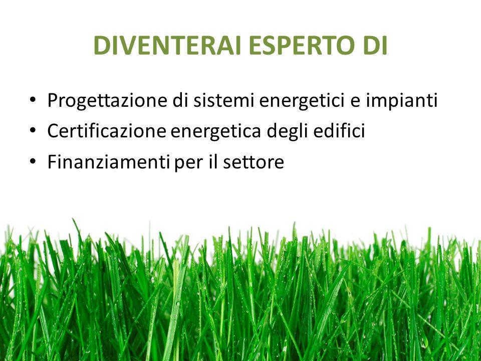 DIVENTERAI ESPERTO DI Progettazione di sistemi energetici e impianti Certificazione energetica degli edifici Finanziamenti per il settore