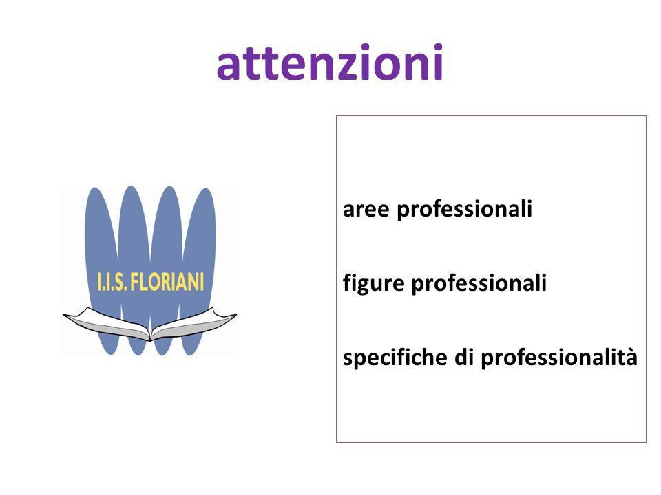 attenzioni aree professionali figure professionali specifiche di professionalità