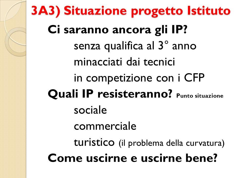 3A3) Situazione progetto Istituto Ci saranno ancora gli IP.