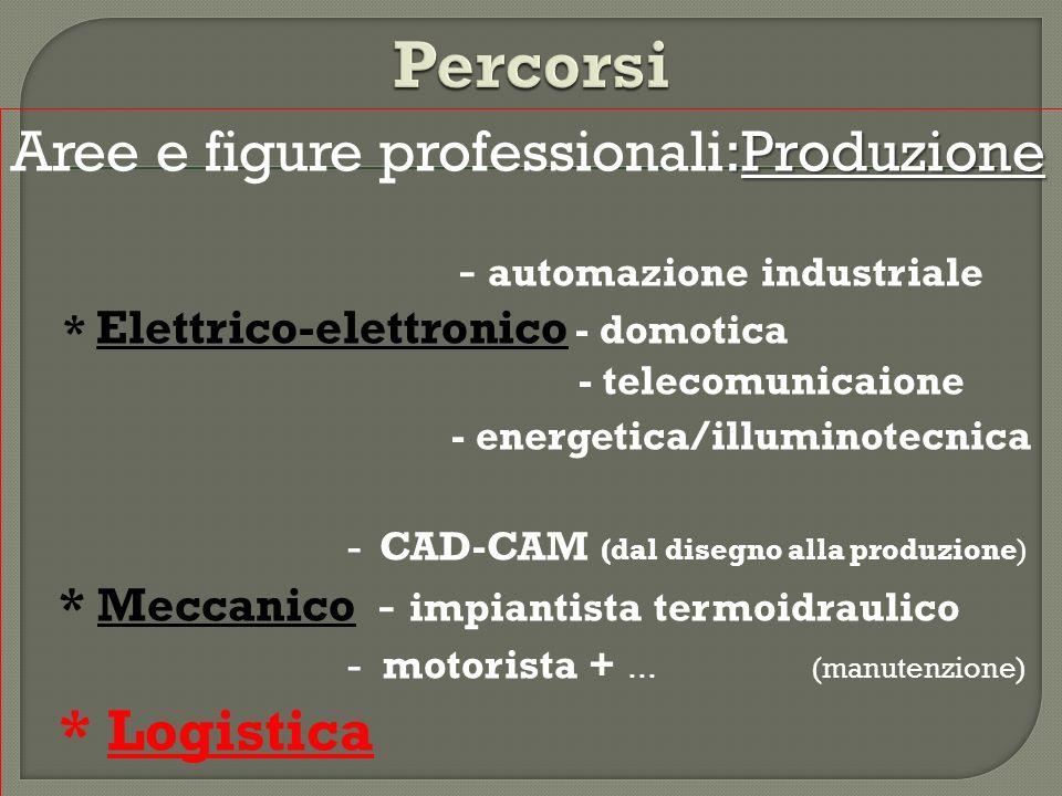:Produzione Aree e figure professionali:Produzione - automazione industriale * Elettrico-elettronico - domotica - telecomunicaione - energetica/illumi