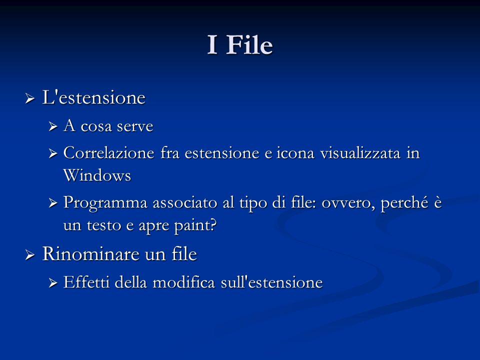 I File L'estensione L'estensione A cosa serve A cosa serve Correlazione fra estensione e icona visualizzata in Windows Correlazione fra estensione e i