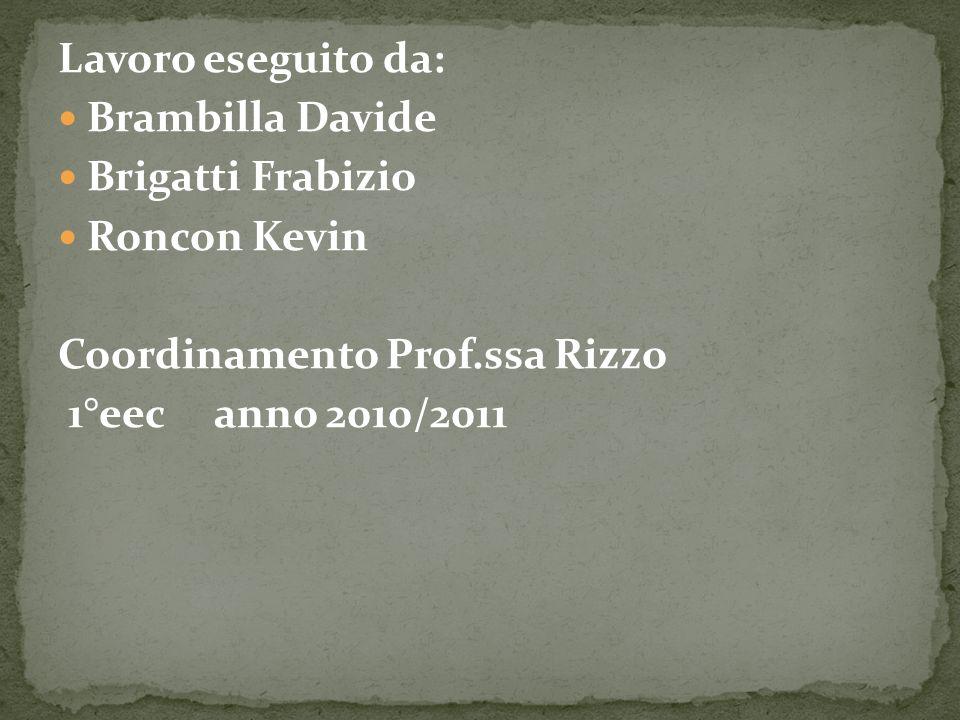 Lavoro eseguito da: Brambilla Davide Brigatti Frabizio Roncon Kevin Coordinamento Prof.ssa Rizzo 1°eec anno 2010/2011
