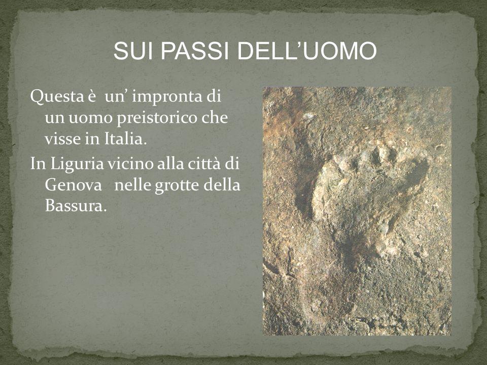 Questa è un impronta di un uomo preistorico che visse in Italia. In Liguria vicino alla città di Genova nelle grotte della Bassura. SUI PASSI DELLUOMO