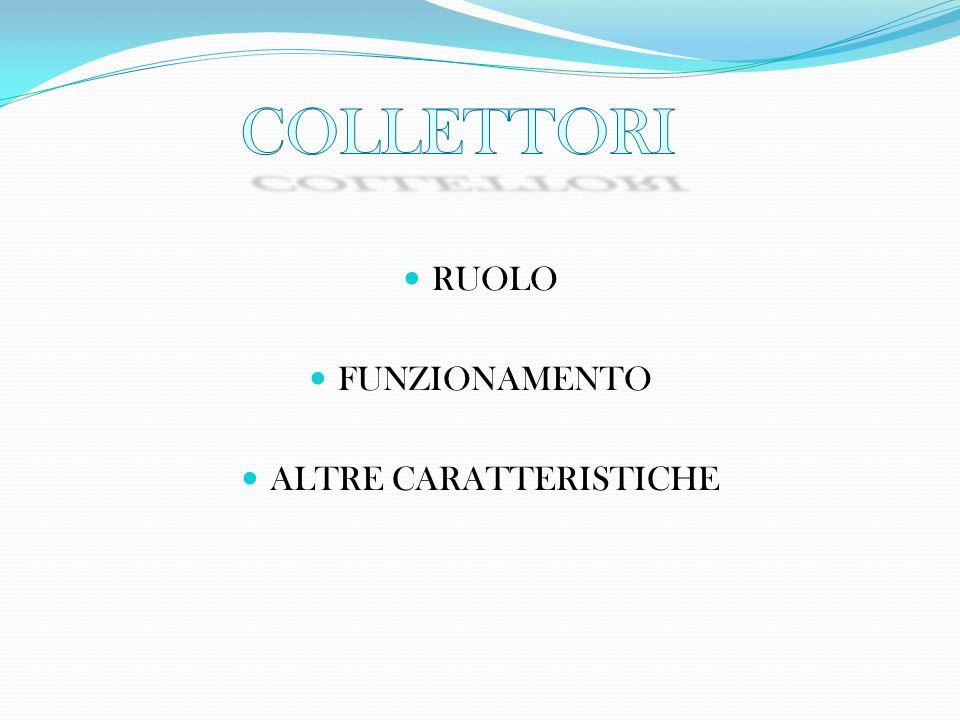 RUOLO FUNZIONAMENTO ALTRE CARATTERISTICHE