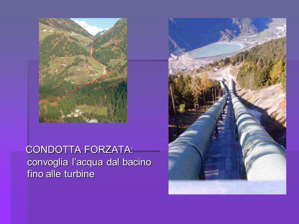 CONDOTTA FORZATA: convoglia lacqua dal bacino fino alle turbine CONDOTTA FORZATA: convoglia lacqua dal bacino fino alle turbine