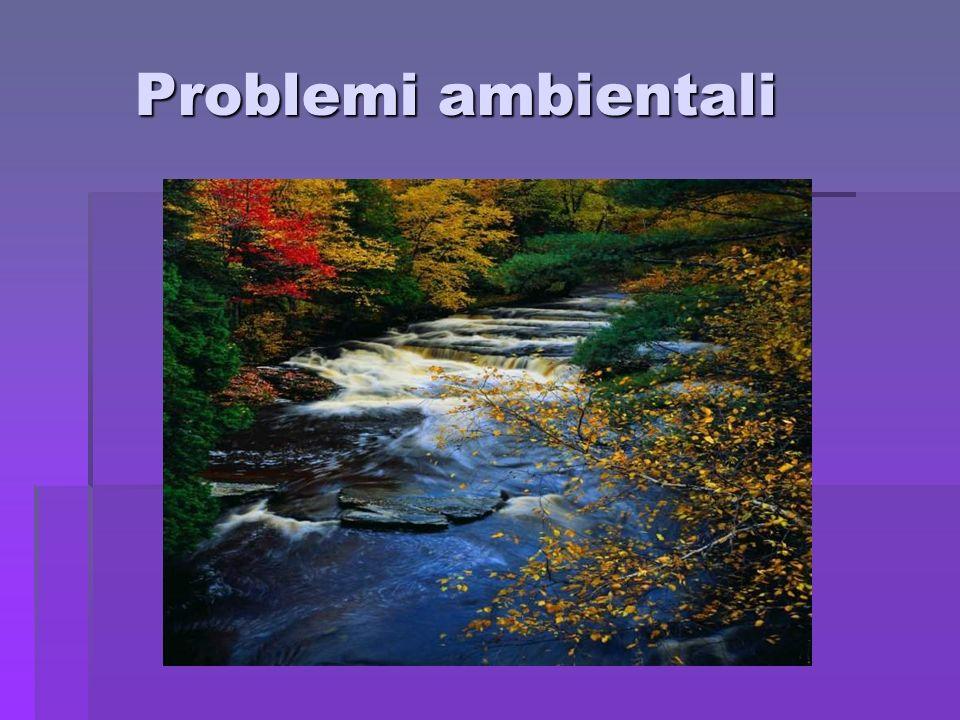 Problemi ambientali