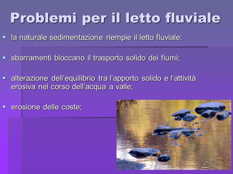 Problemi per il letto fluviale la naturale sedimentazione riempie il letto fluviale; la naturale sedimentazione riempie il letto fluviale; sbarramenti