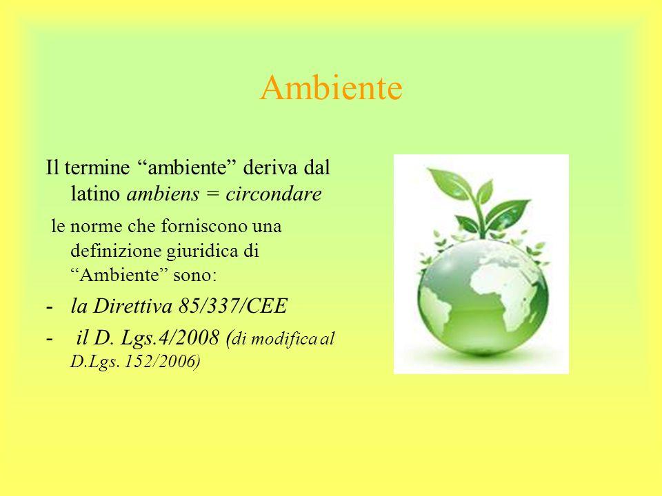 Ambiente Il termine ambiente deriva dal latino ambiens = circondare le norme che forniscono una definizione giuridica di Ambiente sono: -la Direttiva 85/337/CEE - il D.