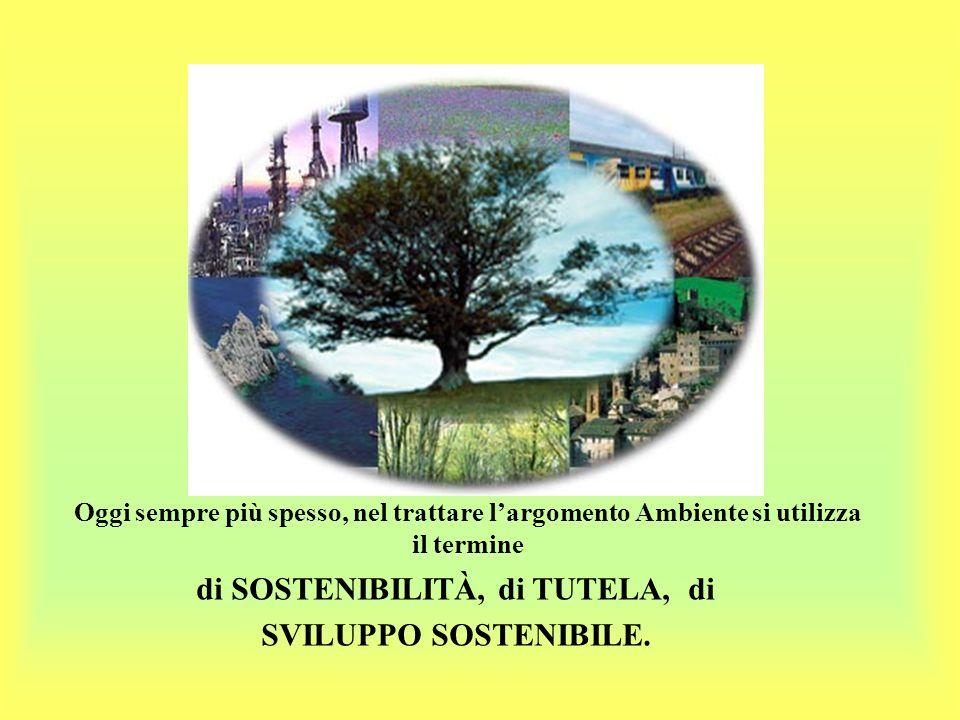 Oggi sempre più spesso, nel trattare largomento Ambiente si utilizza il termine di SOSTENIBILITÀ, di TUTELA, di SVILUPPO SOSTENIBILE.