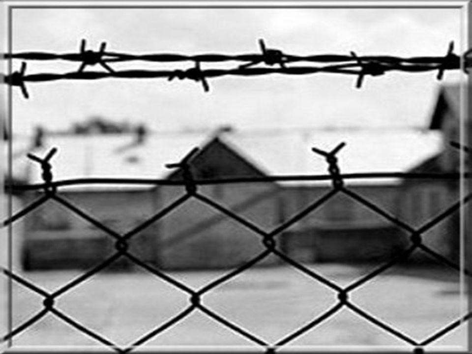 e Il giorno della memoria è ricordato per la prigionia principalmente di ebrei di ogni età, raccolti in campi di concentramento allo scopo di sterminarli a favore della RAZZA PURA.
