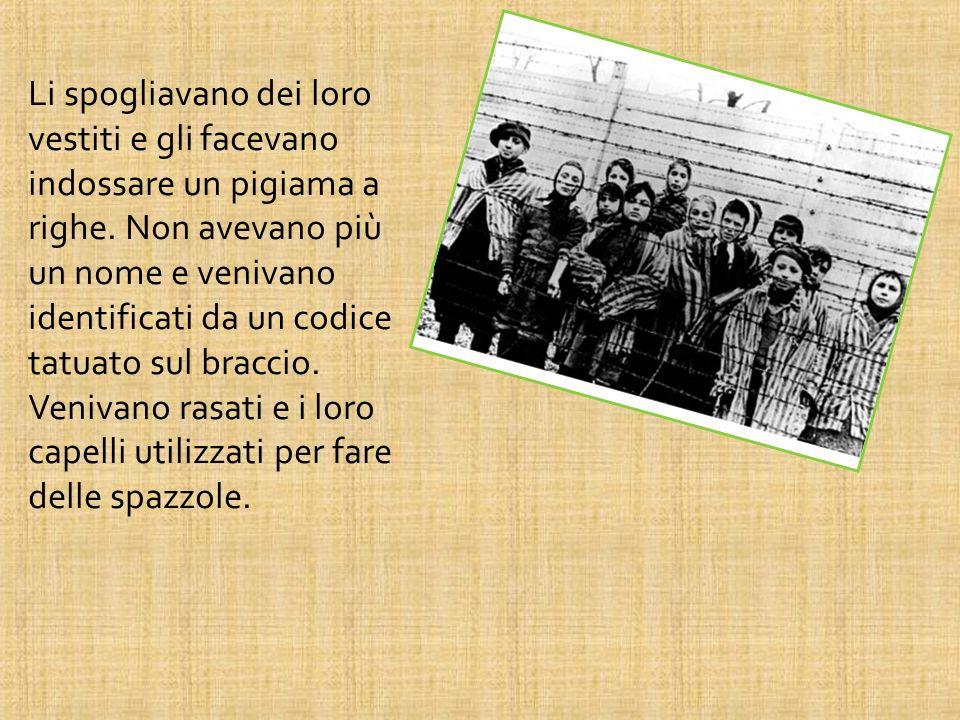 I campi di concentramento erano parecchi, tutti circondati da filo spinato da cui era impossibile fuggire.