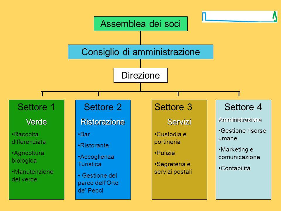 Assemblea dei soci Consiglio di amministrazione Settore 1Verde Raccolta differenziata Agricoltura biologica Manutenzione del verde Settore 2Ristorazio