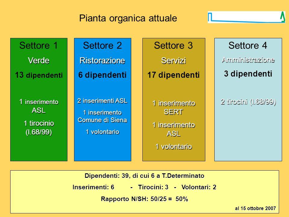 Pianta organica attuale Settore 1Verde 13 dipendenti 1 inserimento ASL 1 tirocinio (l.68/99) Settore 2Ristorazione 6 dipendenti 2 inserimenti ASL 1 in