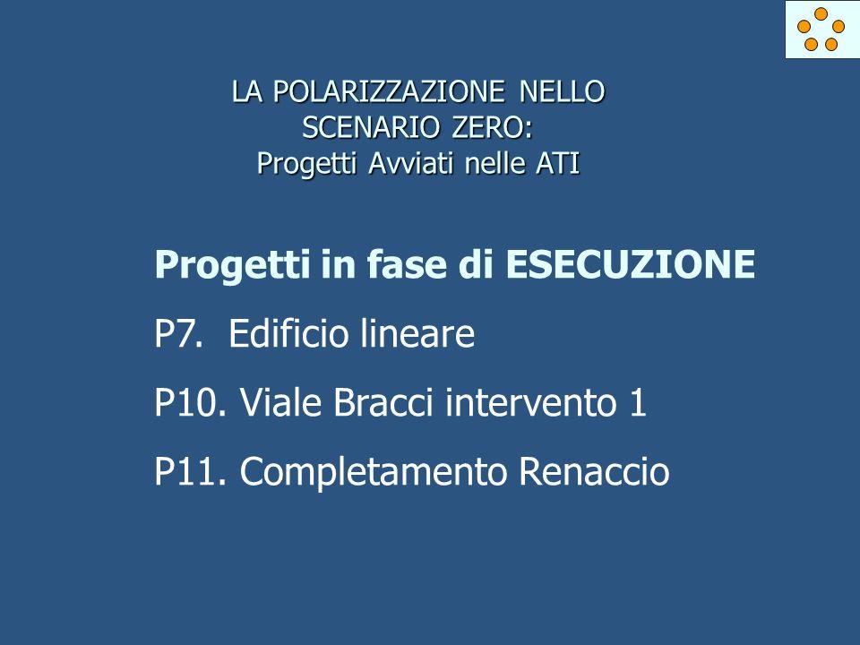 LA POLARIZZAZIONE NELLO SCENARIO ZERO: Progetti Avviati nelle ATI Progetti in fase di ESECUZIONE P7.