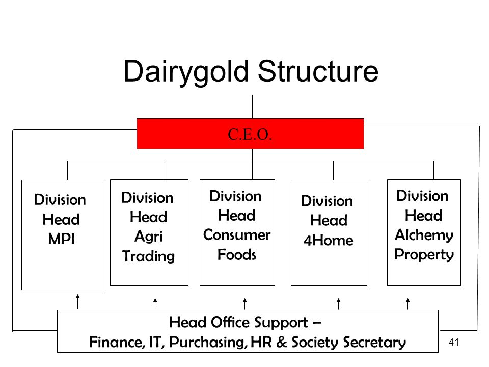 41 Dairygold Structure Division Head MPI Division Head Consumer Foods Head Office Support – Finance, IT, Purchasing, HR & Society Secretary C.E.O. Div