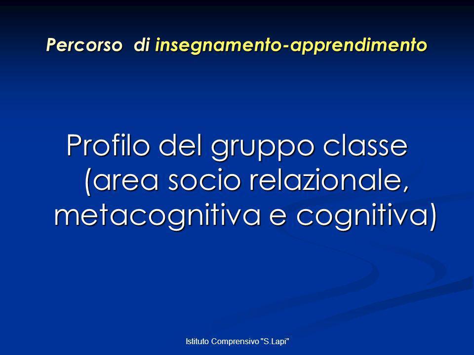 Istituto Comprensivo S.Lapi Percorso di insegnamento-apprendimento Profilo del gruppo classe (area socio relazionale, metacognitiva e cognitiva)