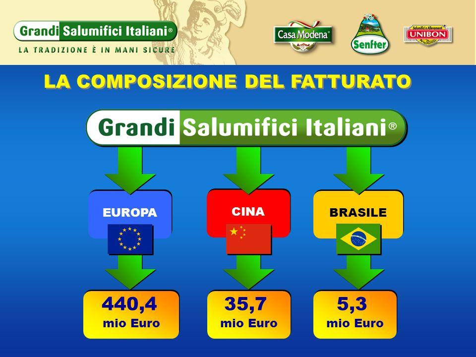 440,4 mio Euro 440,4 mio Euro 35,7 mio Euro 35,7 mio Euro 5,3 mio Euro 5,3 mio Euro LA COMPOSIZIONE DEL FATTURATO BRASILE CINA EUROPA