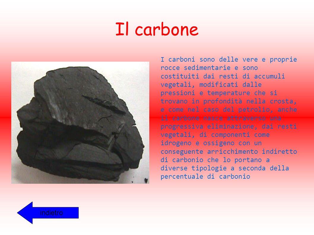Il carbone I carboni sono delle vere e proprie rocce sedimentarie e sono costituiti dai resti di accumuli vegetali, modificati dalle pressioni e temperature che si trovano in profondità nella crosta, e come nel caso del petrolio, anche il carbone nasce attraverso una progressiva eliminazione, dai resti vegetali, di componenti come idrogeno e ossigeno con un conseguente arricchimento indiretto di carbonio che lo portano a diverse tipologie a seconda della percentuale di carbonio indietro