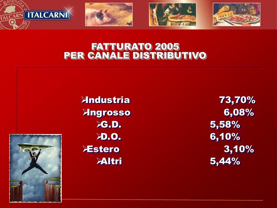 FATTURATO 2005 PER CANALE DISTRIBUTIVO FATTURATO 2005 PER CANALE DISTRIBUTIVO Industria73,70% Ingrosso 6,08% G.D. 5,58% D.O. 6,10% Estero 3,10% Altri