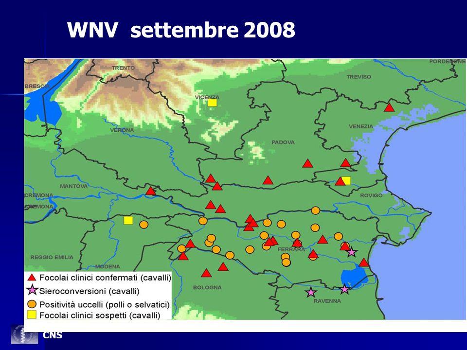 WNV settembre 2008 CNS